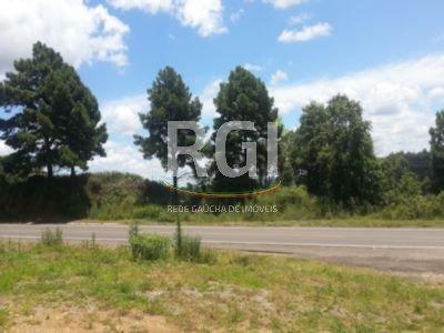 Terreno, Zona Industrial, Garibaldi (FE2375) - Foto 3