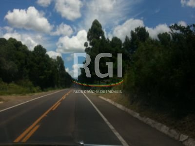Terreno, Zona Industrial, Garibaldi (FE2375) - Foto 6