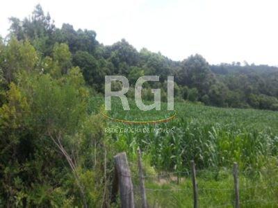 Terreno, Zona Industrial, Garibaldi (FE2375) - Foto 8