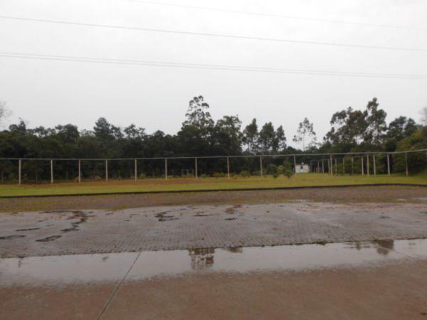 Terreno, Floresta, Nova Santa Rita (FE3909) - Foto 10