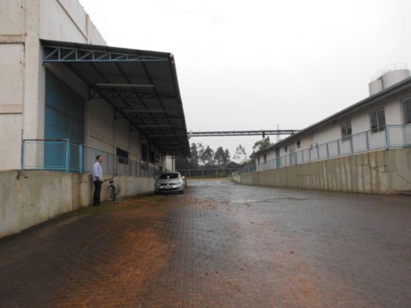 Galpão, Floresta, Nova Santa Rita (FE3929) - Foto 2