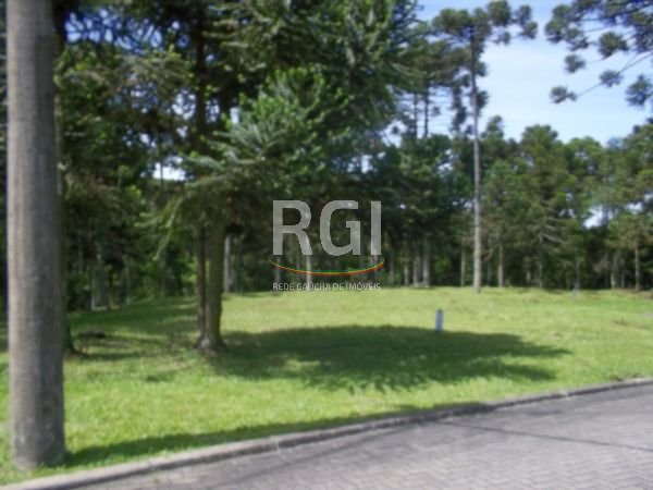 Aspen Moutain - Terreno, Aspen Mountain, Gramado (FE3942) - Foto 8
