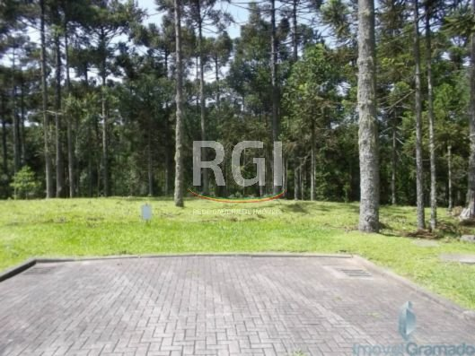 Aspen Moutain - Terreno, Aspen Mountain, Gramado (FE3948) - Foto 3