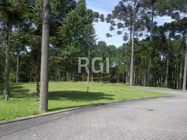 Aspen Moutain - Terreno, Aspen Mountain, Gramado (FE3948) - Foto 4