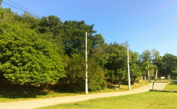 Campos do Conde - Terreno, Passo das Pedras, Porto Alegre (FE4065) - Foto 6