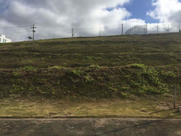 Residencial Alphaville - Terreno, Vila Nova, Porto Alegre (FE4857) - Foto 9