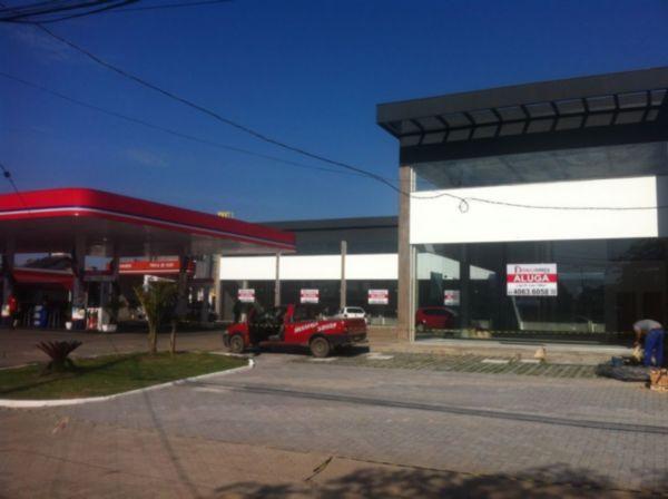 Loja, Cristal, Porto Alegre (FE4897) - Foto 8