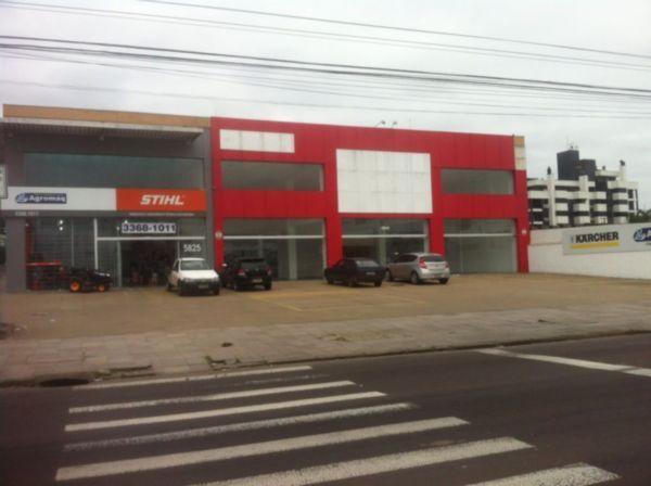 Loja, São Sebastião, Porto Alegre (FE4909)