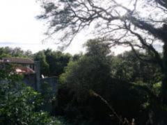 Terreno, Espírito Santo, Porto Alegre (FE5149) - Foto 3